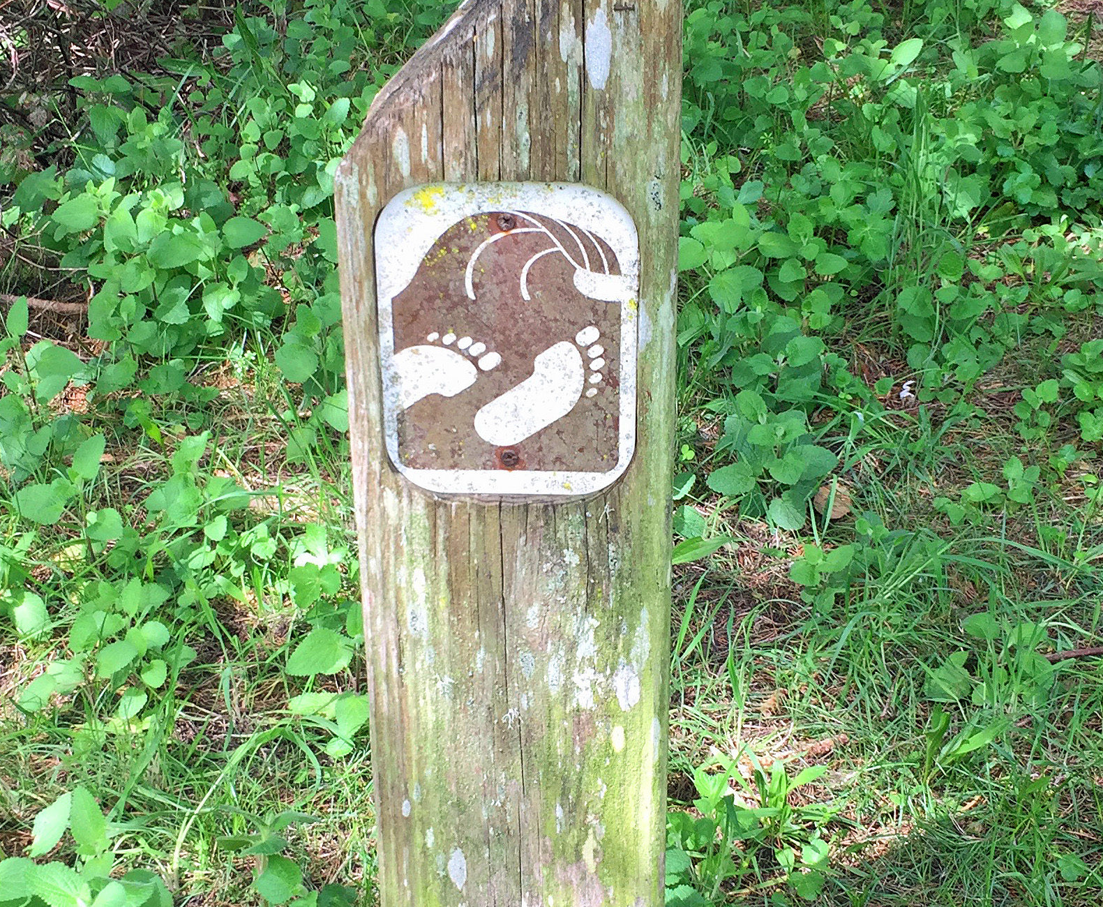 Trail to the Beach Marker